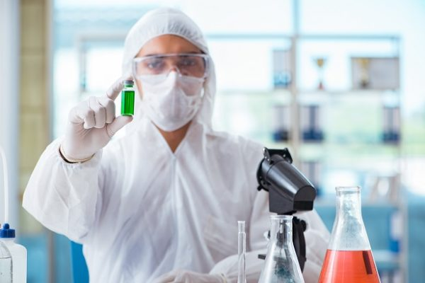 Chemist testing in the laboratory cannabis extract for medical purposes